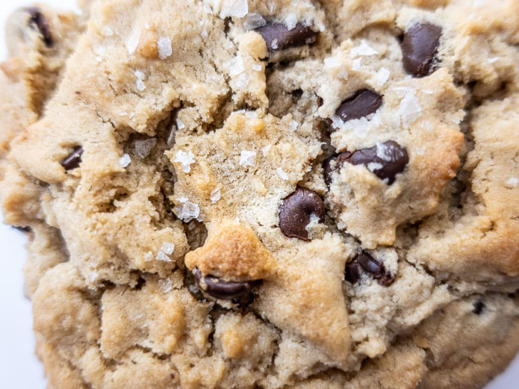 Close up of cookie