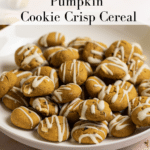 Close up shot of cookie cereal in a bowl